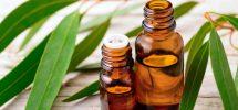 proprietà cosmetiche eucalipto