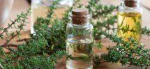 proprietà olio essenziale di timo